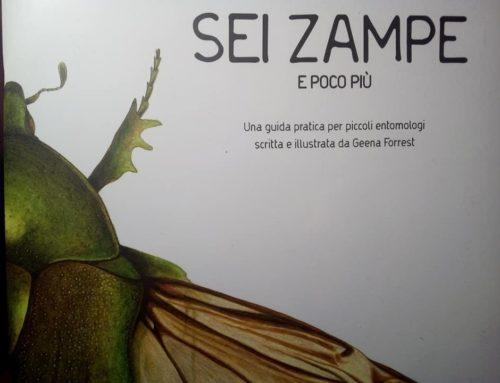 Per i futuri entomologi